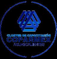 Clúster de Capacitación COPARMEX Aguascalientes